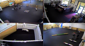 Live Web Cam available now at The Fifo Fitness Club to watch your dog at play.