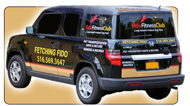 Fido Fitness offers Fetching Fido - Your dogs pickup and delivery service.